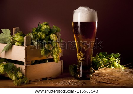 Still life with beer and hops. - stock photo