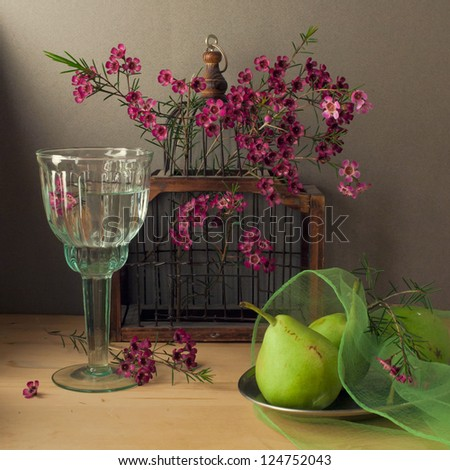 Still life with bird cage and pears - stock photo