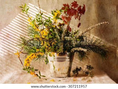 Still life with bunch of gifts of the forest - stock photo