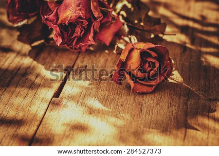 Still life with dry roses on old wooden table - stock photo