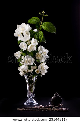 Still Life with Jasmine flowers  in a vase - stock photo