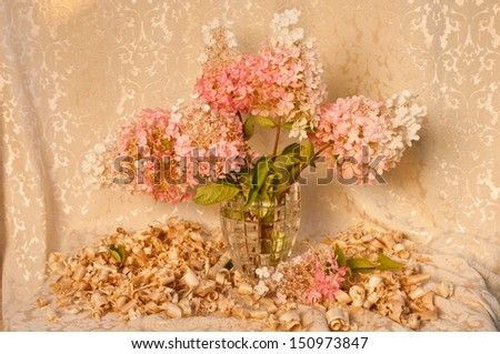 still life with pink hydrangea - stock photo