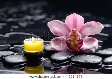 still life with pink orchid and candle on black stones  - stock photo