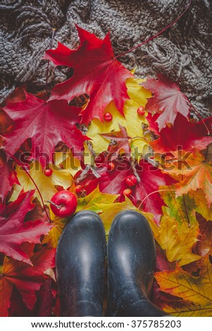 Still life with rainy boots, colorful dry leaves and small red apples - stock photo