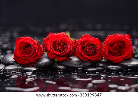 Still life with row of rose and wet stones - stock photo