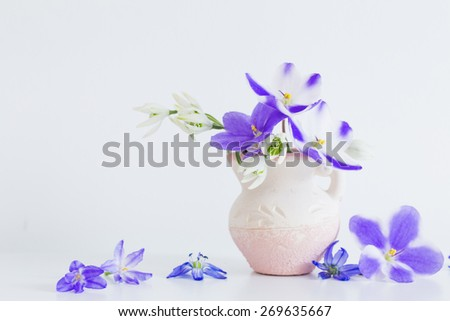 Still life with spring blue flowers - stock photo