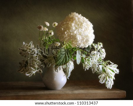 Still life with white hortensia - stock photo