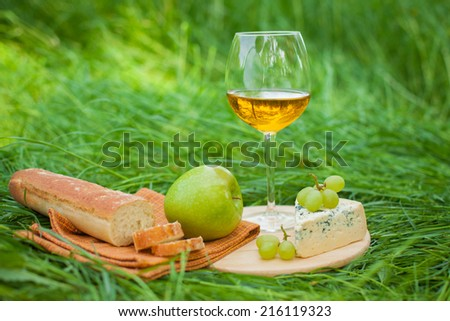 still life with white wine, baguette, cheese, grape and apple on the grass  - stock photo