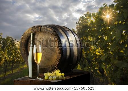 still life with white wine on vineyard - stock photo