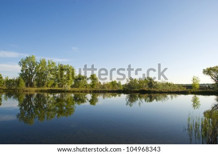 Still small lake with reflections of cottonwoods, on a quiet summer morning on the Colorado prairie - stock photo