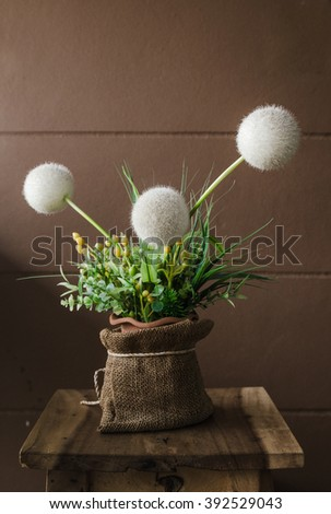 Stillife with dandelions, Still life composition with dandelions - stock photo