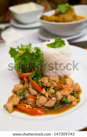 Stir Fried Chicken with Holy Basil and steamed rice, Thai Spicy Food - stock photo