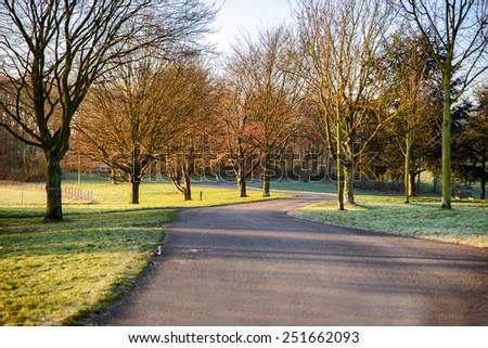 Stock image of a path leading through a national park - stock photo