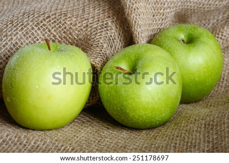 Stock image of fresh apples from the orchard - stock photo