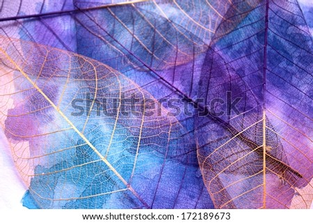 Stock leaf abstract background - stock photo