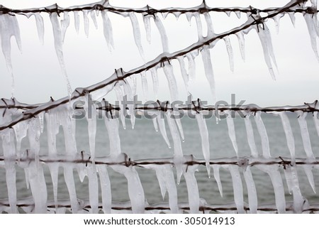 Stock photo of icicles hanging at barbed wire on a gray winter day. Symbol of captivity, the barbed wire fence, against symbol of liberty - the sea at background.  - stock photo