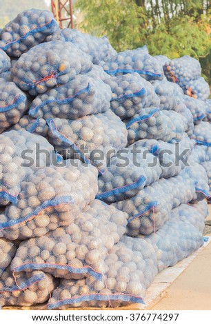 Stock potato prepared to sell. - stock photo