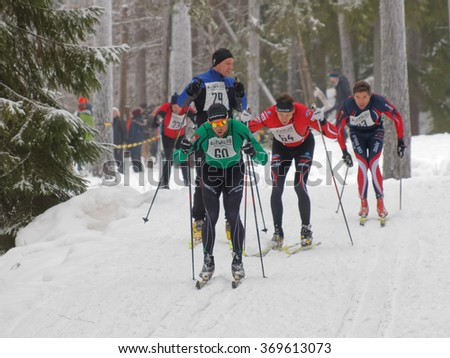 STOCKHOLM - JAN 24, 2016: Group of focused cross country skiing men in the forest at the Stockholm Ski Marathon event January 24, 2016 in Stockholm, Sweden - stock photo