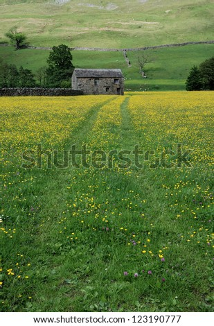 Stone barn & lead in tracks through hay meadows, Yorkshire dales. UK - stock photo