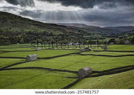 Stone barns and dry stone walls near Gunnerside, Swaledale, in clearing storm - stock photo