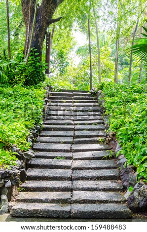 Stone footpath in the garden park - stock photo
