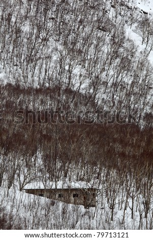 Stone house in a snowy forest - stock photo