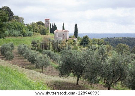 stone house in olive country - stock photo