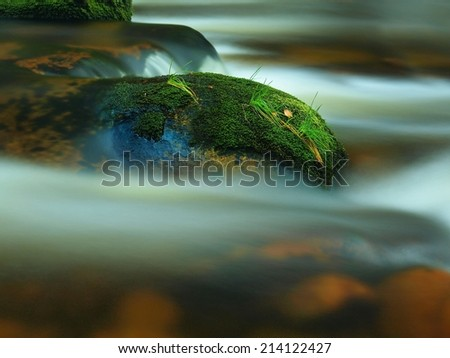 Stone jammed in the mountain river with wet mossy carpet and grass leaves. Fresh colors of grass, deep green color of wet moss and blue milky water below stone. - stock photo