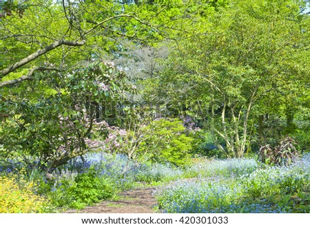 Stone path in colourful spring English wild garden with flowers, shrubs and trees in bloom. Blue, white forget me not, pink azaleas, rhododendrons, blue bells flowering along the walkway. - stock photo
