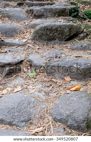 Stone path,Road in the forest in autumn colors with fallen leaves on the ground - stock photo