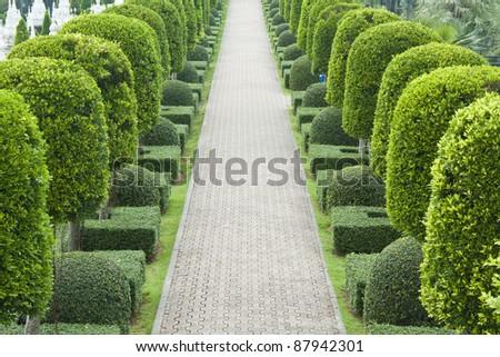 Stone pathway in garden - stock photo