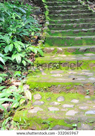 Stone stairs in the forest - stock photo