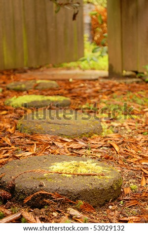 Stone Steps Leading to Garden Gate - stock photo