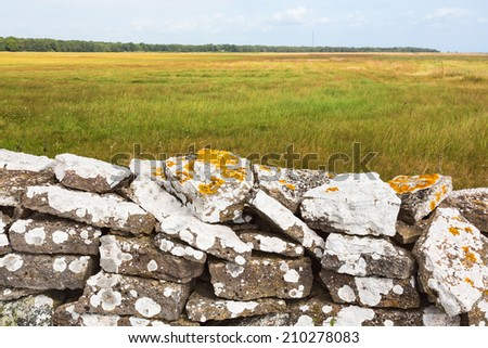 Stone wall in the meadow with yellow lichen - stock photo