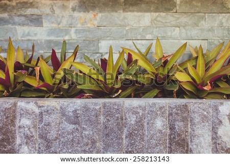 Stone Wall, Steps and Planter on  colorful, landscaped  Garden - stock photo