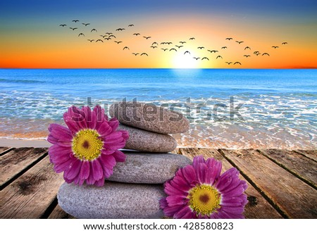 stones and flowers on the beach - stock photo
