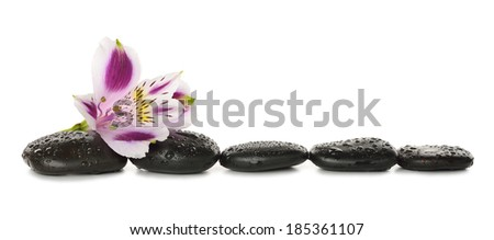 Stones and lily isolated on white background - stock photo