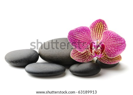 stones and orchid on the white background - stock photo