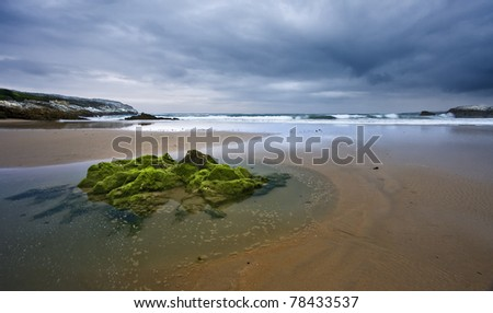 Stones on lonly beach at sunset - stock photo