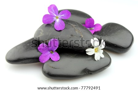 stones with flowers close up - stock photo