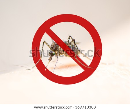 Stop/ Prohibit sign on mosquito on human skin w/ human blood in insect stomach: Tropical animal, danger bacteria carrier cause dangerous illness/ disease- zika virus, malaria, flavivirus, dengue, gnat - stock photo