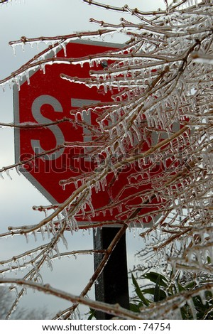 Stop Sign and Ice Covered Tree Limbs - stock photo