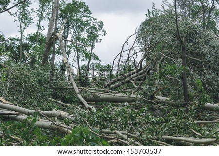 Storm consequences in the city of Minsk 13.07.16 - stock photo