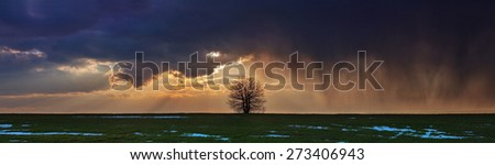 storm on the landscape of wheat panorama - stock photo