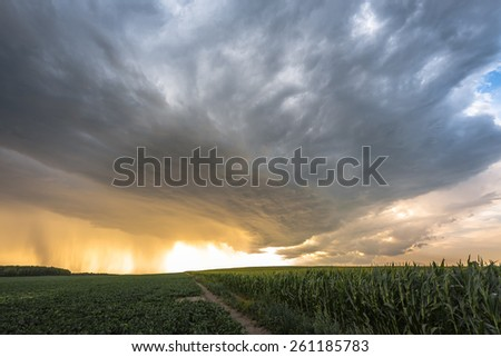 Stormy clouds over the fields of maize and beets - stock photo