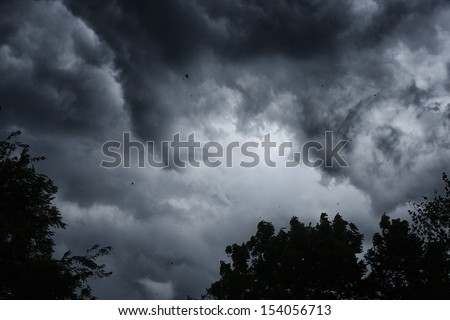Stormy sky, blowing wind leaves and debris in the air, Webster County, West Virginia, USA - stock photo