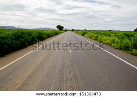 Straight asphalt road in rural field. - stock photo