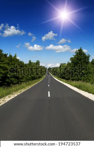 Straight main road leads across the forest - stock photo