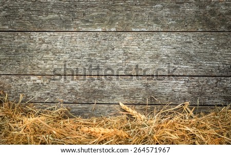 Straw and wheat on a rustic wooden background with copy space for your text - stock photo