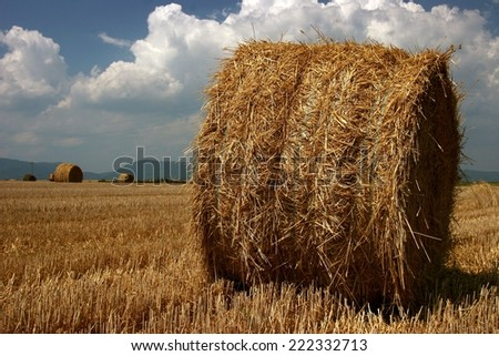 straw bale - stock photo